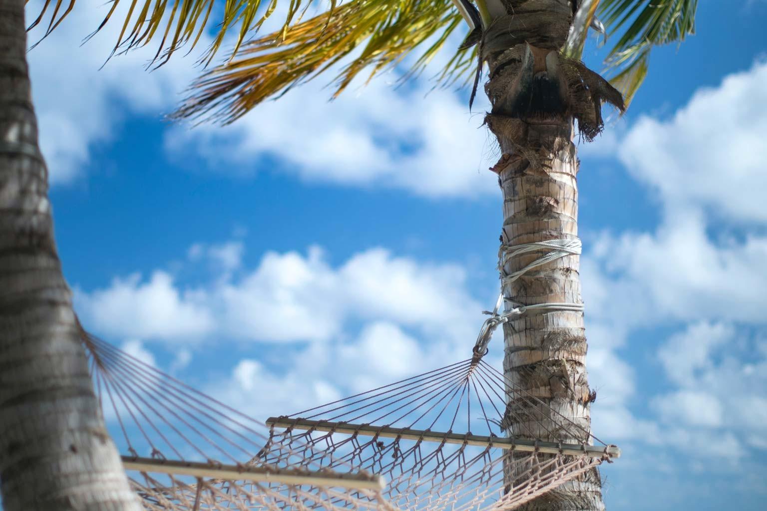 Ab in den Urlaub: So bereitet ihr eure Website auf eine Auszeit vor 1